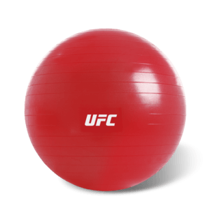 UFC Fitball Red