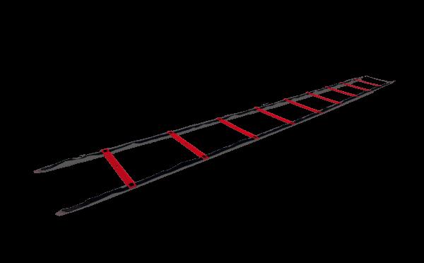 UFC Speed Ladder